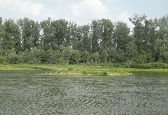река_Ай_отмель_reka_Ai_otmel