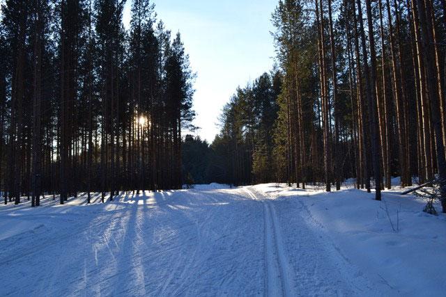 зима_zima