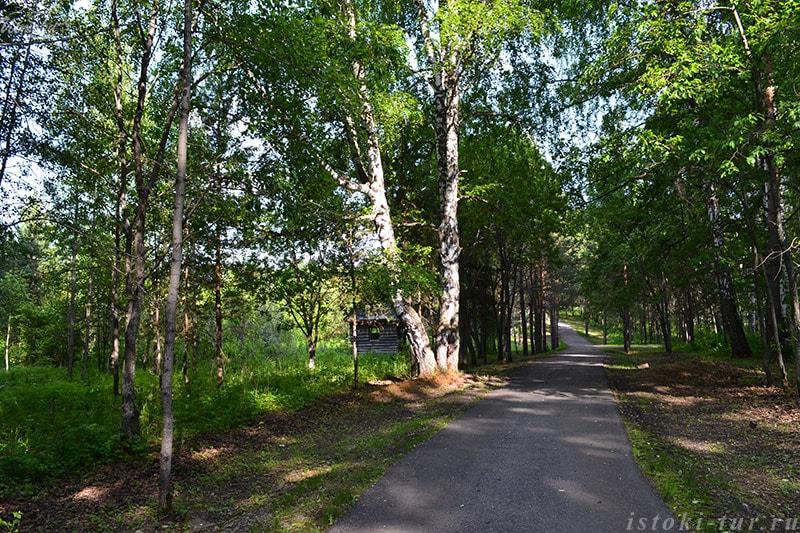 лесной_терренкур_lesnoj_terrenkur