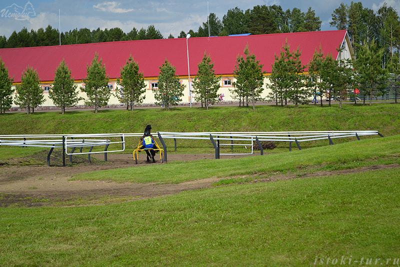 конные_бега_konnye_bega