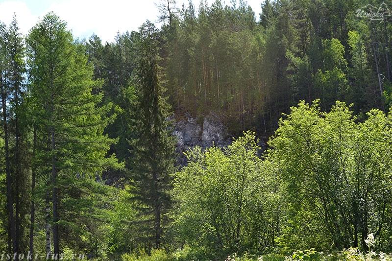 скалы_за_деревьями_skaly_za_derev'jami