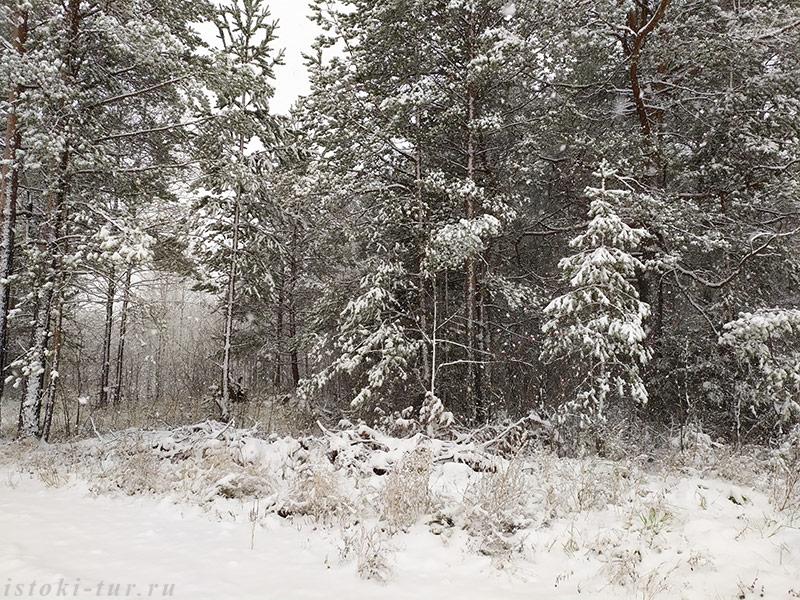снегопад_snegopad