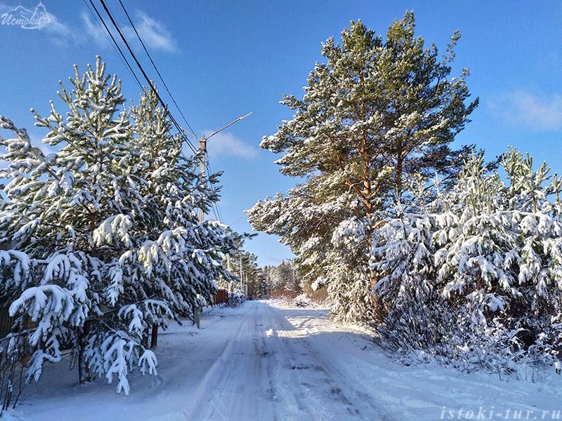 начало_зимы_nachalo_zimy