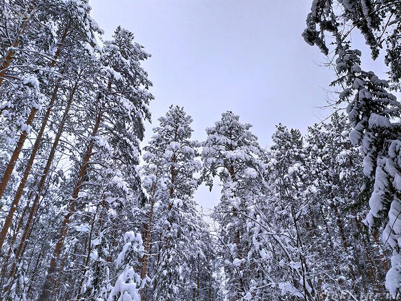 снежные_шапки_snezhnye_shapki