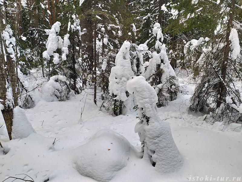 снежные_существа_snezhnye_sushhestva