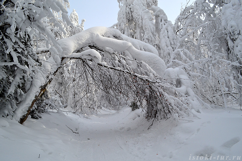 снежная_арка_snezhnaja_arka