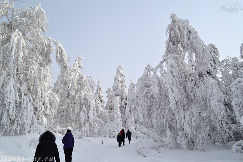 снежное_царство_snezhnoe_carstvo