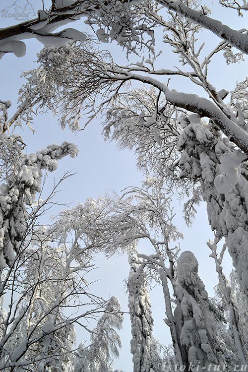 снежные_великаны_snezhnye_velikany