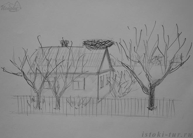 дом_с_гнездом_dom-s-gnezdom