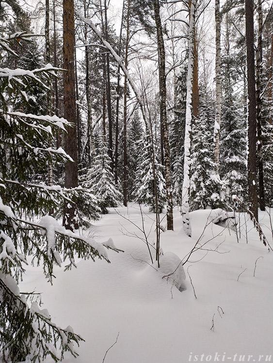 зимняя_тишина_zimnjaja-tishina